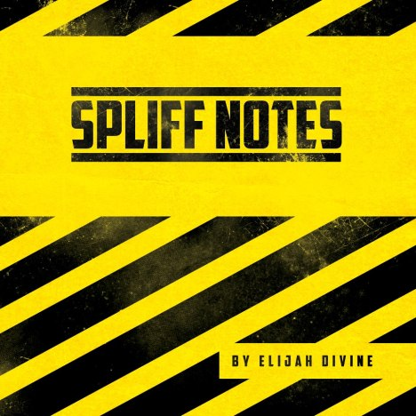 spliffnotescover